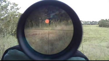 Coyote Hunting Scopes